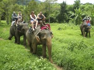 Таиланд - это интересно