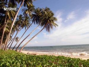 Mui-Ne-Beach_Vietnam