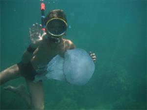 Достопримечательности Туниса медузы