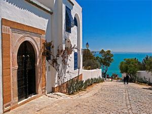 Поездка в Тунис