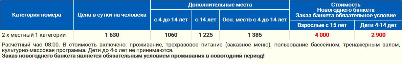 Новый Год 2017 - 2018 в пансионате ОРБИТА - 1 Сочи